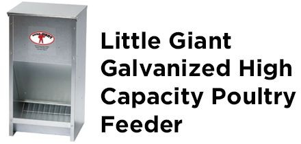 Little Giant Galvanized High Capacity Poultry Feeder