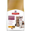 Multiple Benefit For Multiple Cat Households Adult Cat Food