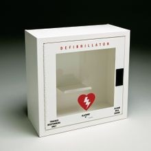 Allegro<sup>®</sup> 4210-01 Defibrillator Wall Case with Alarm