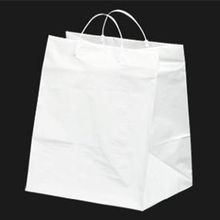 BAG PLASTIC TAKEOUT 12X10X14 CARDBOARD BOTTOM (250)