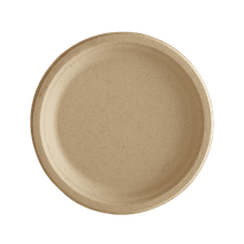 Bagasse Compostable Dinner Plates, 9