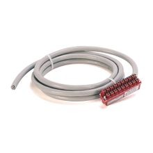 Digital I/O Module Ready Cable, 20 conductors, #18 AWG, w/1746-RT25B connector, length 1.0 meter (3.28 feet)