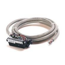Digital I/O Ready Cable Using Type RTN32I, 40 Conductor (2 not connected), #22 AWG, w/2 1769-RTB18, length 2.5 meter (8.2 feet)
