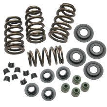 "Sidewinder<sup>®</sup> .650"" Valve Spring Kit for 2005-'18 Big Twins and 2004-'19 HD<sup>®</sup> Sportster<sup>®</sup> Models"