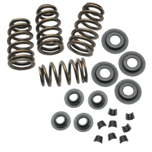 ".650"" Lift Sidewinder<sup>®</sup> Valve Spring Kit for 1984-2004 Big Twins and 1986-2003 HD<sup>®</sup> Sportster<sup>®</sup> Models"