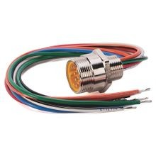 Allen-Bradley, 888N-M5AF1-1F, Receptacle, Mini/Mini Plus, Male, Straight, 5-Pin, 16AWG, 1 feet (0.3 meters)