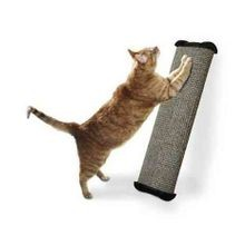 Lean-It Anywhere Scratch Post