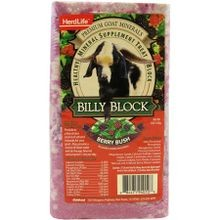 Billy Block Healthy Mineral Supplement Treat Block