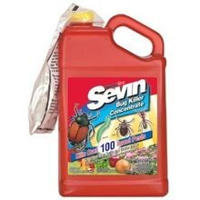 Sevin Ready-To-Use Concentrate Bug Killer