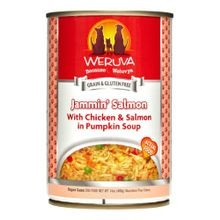 Jammin Salmon Canned Dog Food - 14 oz