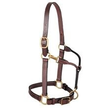 3-In-1 All Purpose Halter