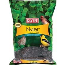 Nyjer Thistle Bird Seed