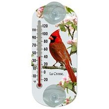 Traditional Thermometer with Cardinal Design, 8