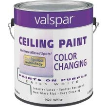 Color Changing Latex Ceiling Paint - 1Gallon