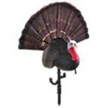 Chicken On A Stick Jake Turkey Decoy