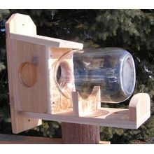 Economy Hanging Bird Feeder
