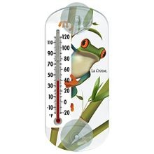 Traditional Thermometer With Frog Design