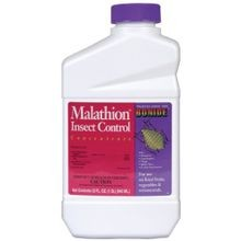 Chemical Malathion Concentrate Insecticide