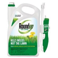 For Lawns Wand - 1.33 gal