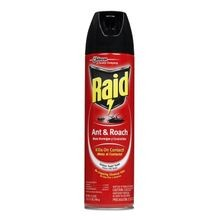 Ant & Roach Killer - 17oz