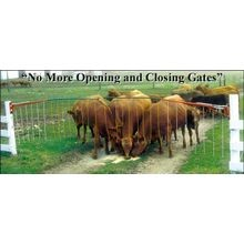13' x 19' Original Drive Thru Electric Gate