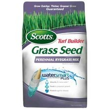 Turf Builder Grass Seed Perennial Ryegrass Mix