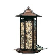 Tall Tulip Garden Feeder