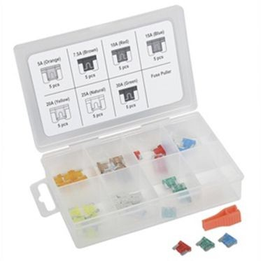 Low Profile Mini Fuse Assortment