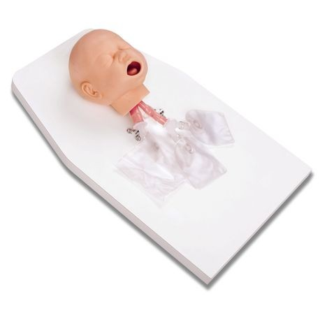 Infant Airway Management Trainer on a Stand