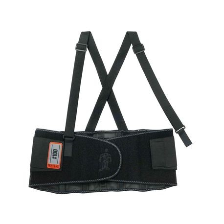 Ergodyne® ProFlex® 100/4XL Economy Back Support