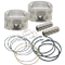 "95"" Conversion Pistons for 1999-'06 HD<sup>®</sup> Big Twins - +.020"""