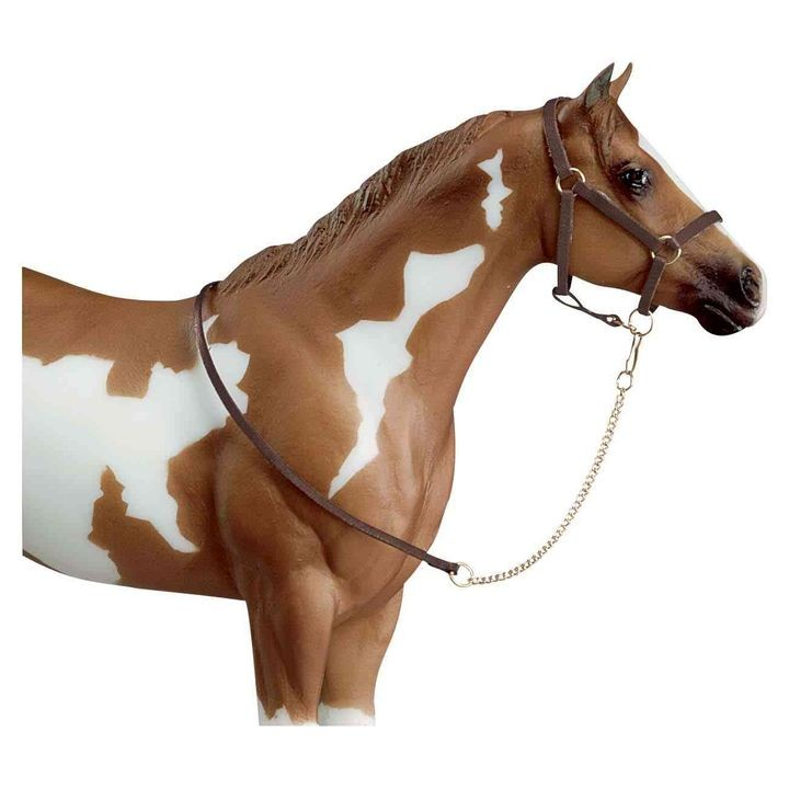 Halter with Lead