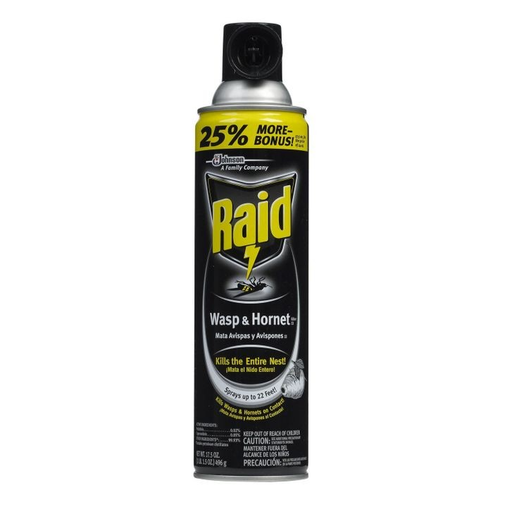 Wasp & Hornet Insecticide 17oz