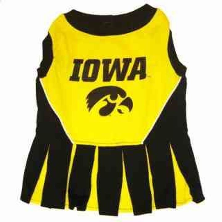 Iowa Hawkeye Cheerleader Dog Coat