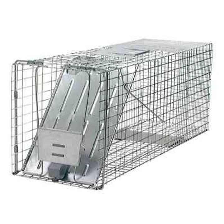 Racoon Trap With Spring Loaded Door