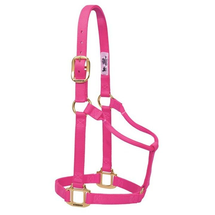 "1"" Original Non-Adjustable Nylon/Brass Halter For Horses"