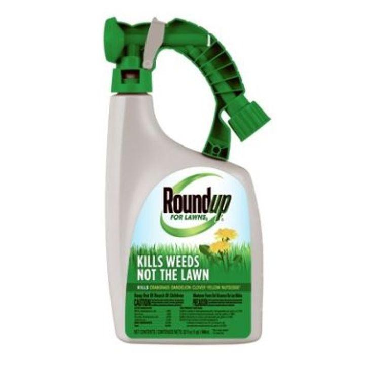Pump Sprayer For Lawns 32 Oz