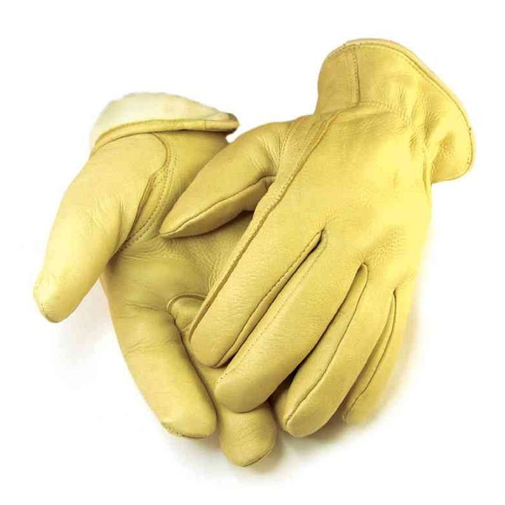 Thinsulate Lined Deerskin Glove