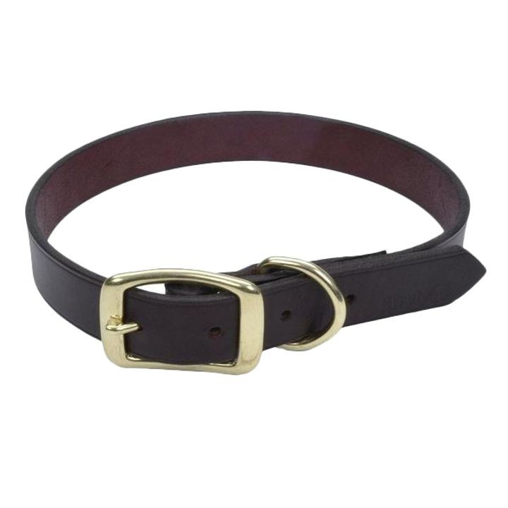 "1"" x 22"" Latigo Leather Town Dog Collar"