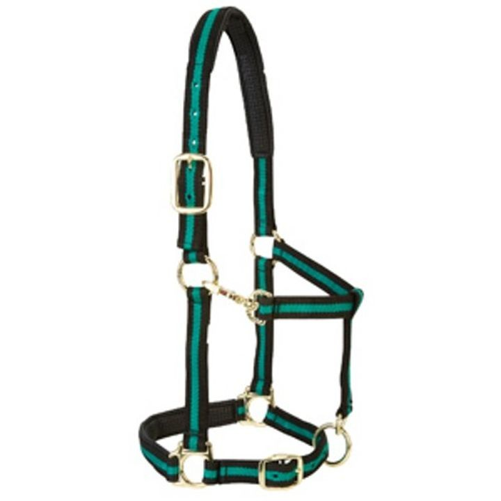 "1"" Padded Adjustable Throat Snap Halter For Medium Horses"