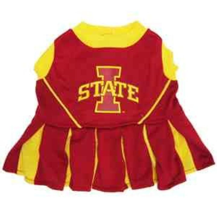 Iowa State Cheerleader Dog Coat