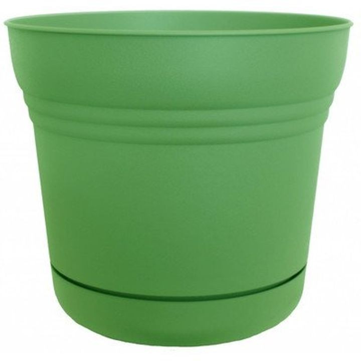 "10"" Saturn Planter - Honeydew"