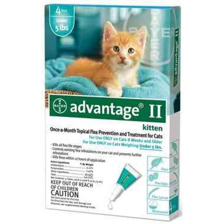 advantage cat flea treatment instructions