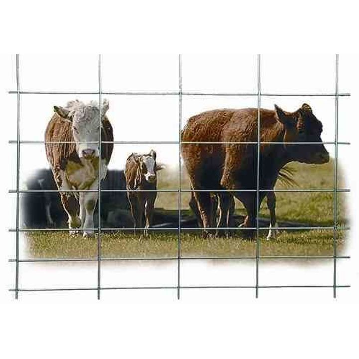 Cattle Panel Theisen S Home Amp Auto