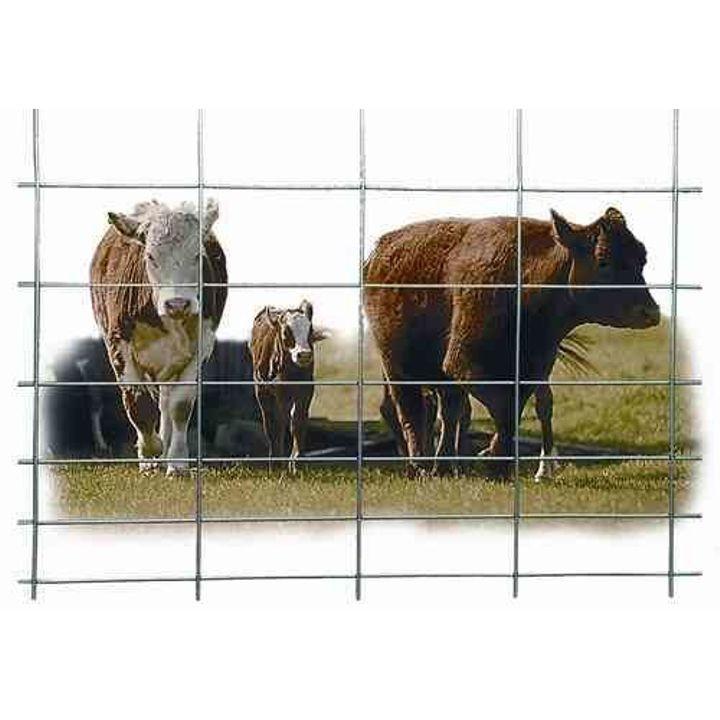 Cattle Panel Theisen S Home Amp Auto